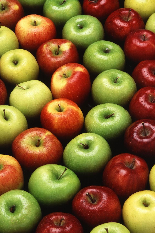عکس درخت سیب قرمز