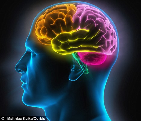 சிக்கலான உறுப்பான மூளையைப் பற்றித் தெரிந்து கொள்ள | To know more about the complexity of the brain organ !