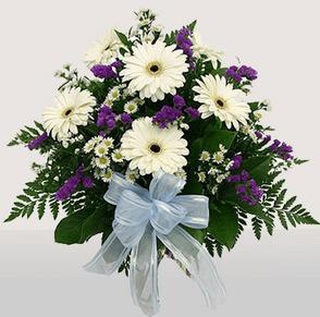 Öğretmenler günü çiçeği örneği