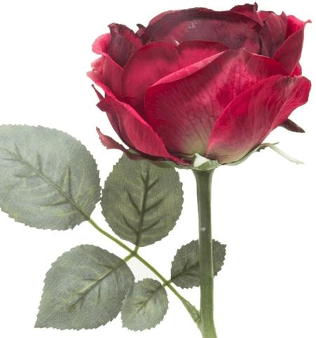 Tek dal dekoratif çiçek örneği