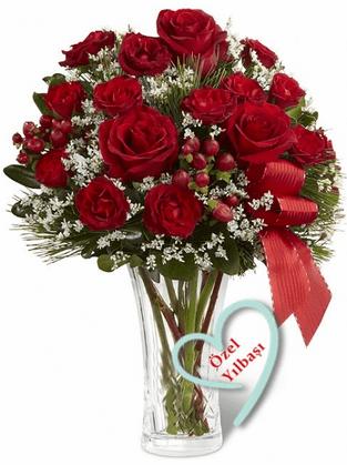 Yılbaşı çiçeği örneği