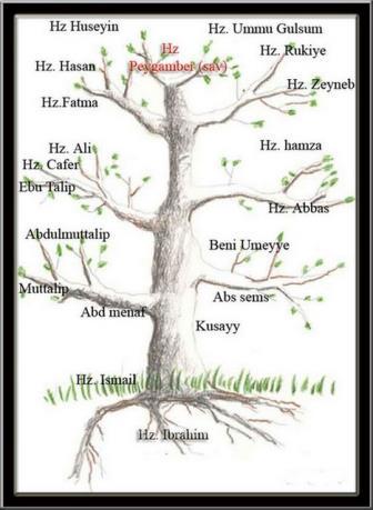 Soy Ağacı Nedir Soy Ağacı Ne Demek Nedircom