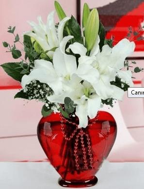 Anneye alınabilecek çiçek örneği